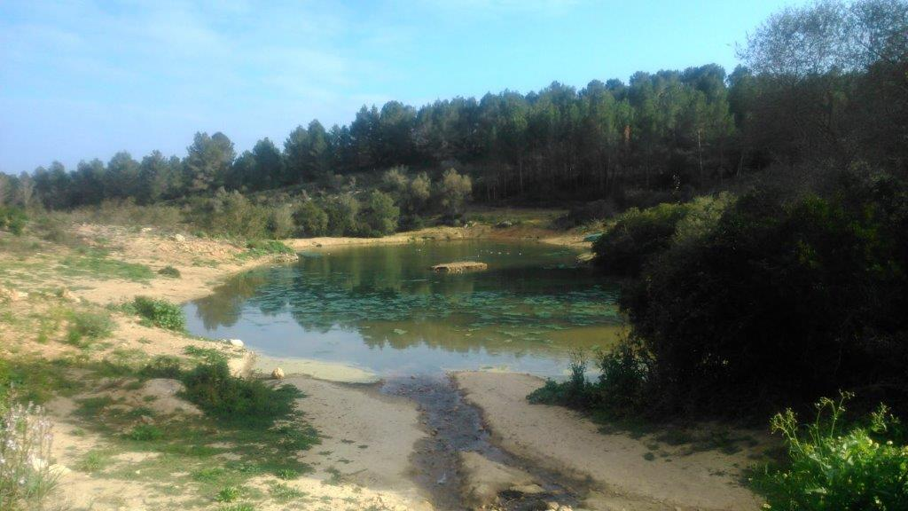 Lagunas Recreativas